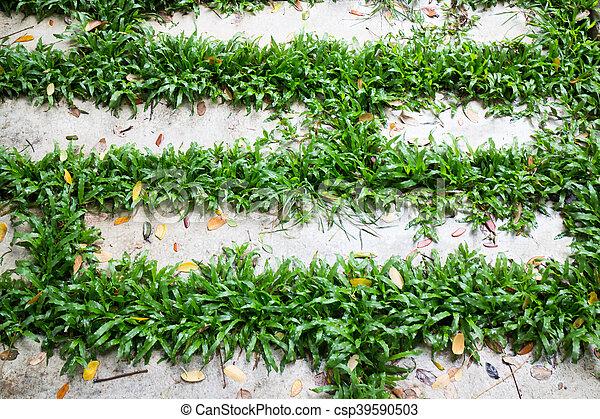 Brique Exterieur Jardin Plancher Ciment