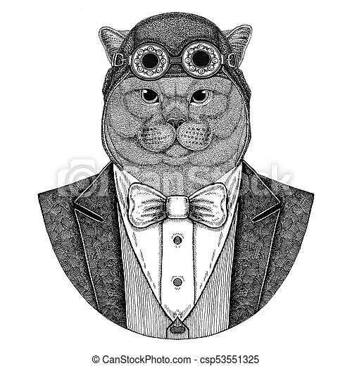 813eab051 Brithish Noble Cat Male Animal Wearing Aviator Helmet And Jacket With Bow  Tie Flying Club Hand Drawn