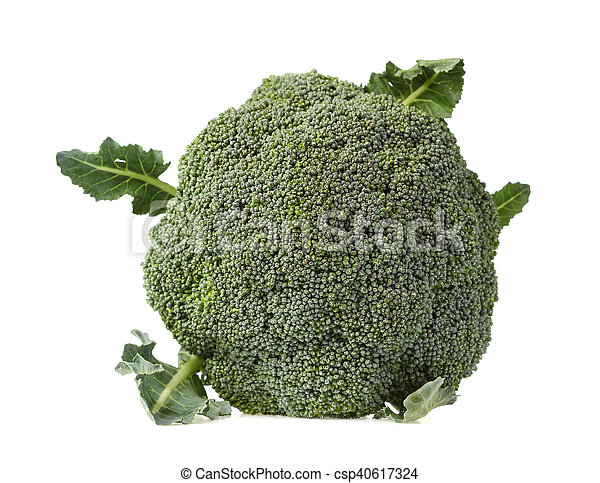 Broccoli isolated on white background - csp40617324