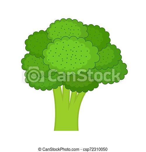 Broccoli on a white background. - csp72310050