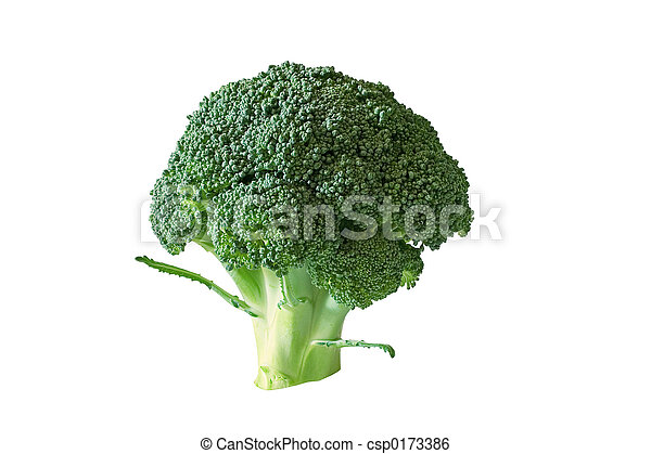 Broccoli - csp0173386