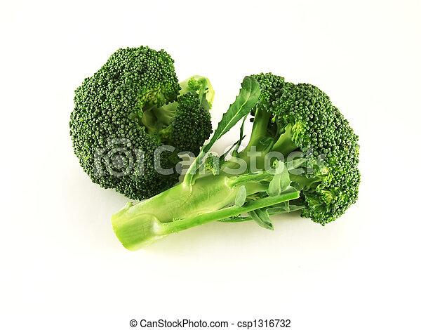 broccoli - csp1316732