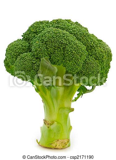 broccoli - csp2171190
