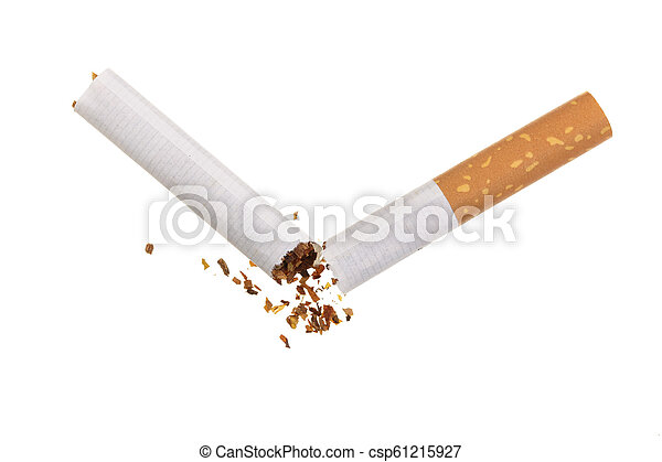 Broken cigarette isolated on white background. Top view - csp61215927