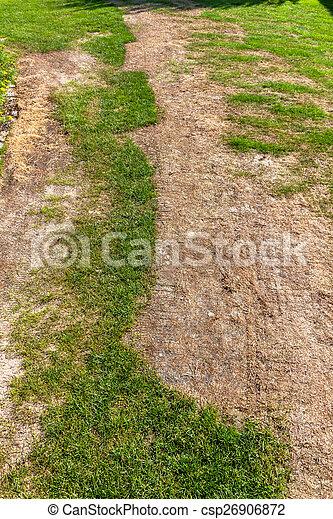 broken lawn - csp26906872