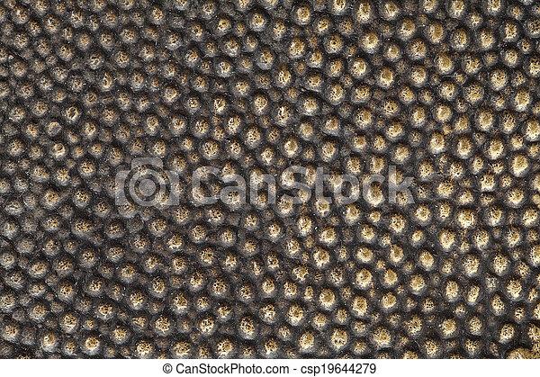 Bronze - csp19644279