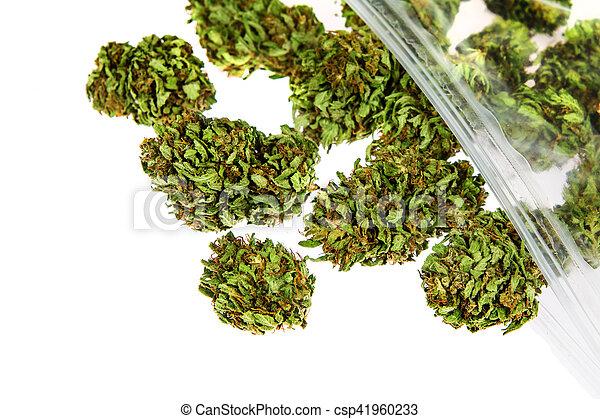 brotos, branca, marijuana, fundo, isolado - csp41960233