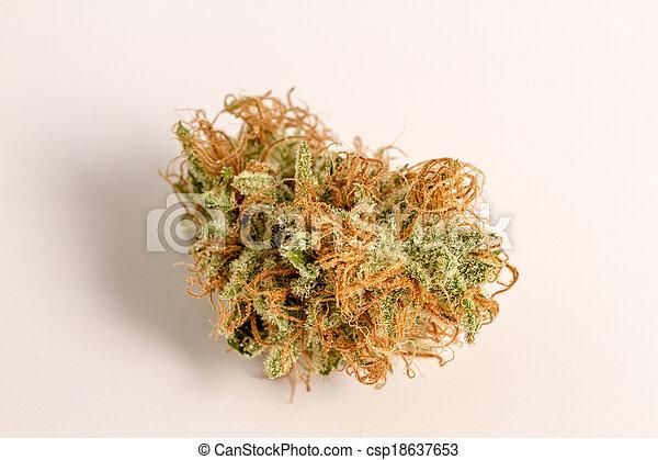 brotos, marijuana - csp18637653