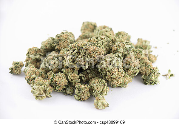 brotos, strain), detalhe, isolado, cannabis, (mango, sopro, branca - csp43099169