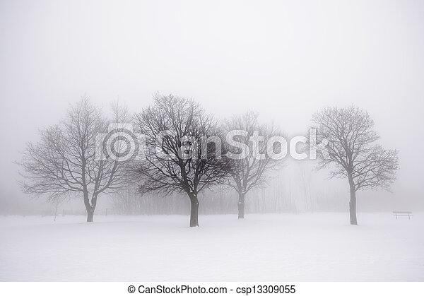 brouillard, arbres hiver - csp13309055