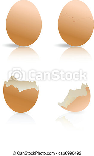 brown and broken egg shells isolated - csp6990492