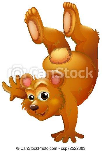 Brown bear handstanding on white background - csp72522383