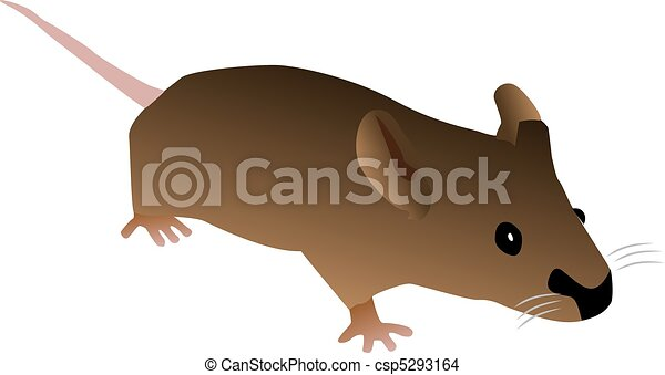 Brown Cartoon Mouse - csp5293164