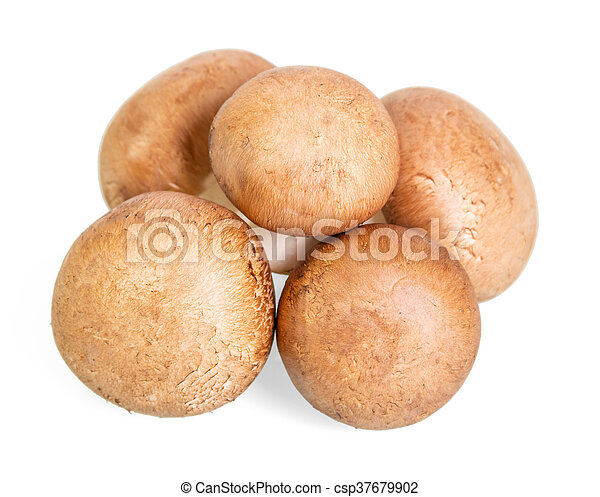 Brown champignons mushrooms close-up isolated on white. - csp37679902