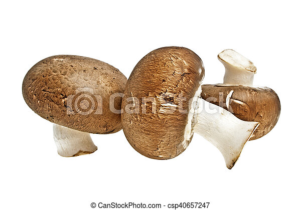 Brown champignons mushrooms - csp40657247