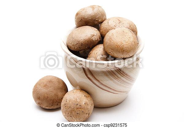 Brown Champignons - csp9231575