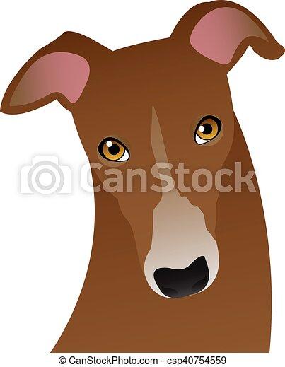 brown dog - csp40754559