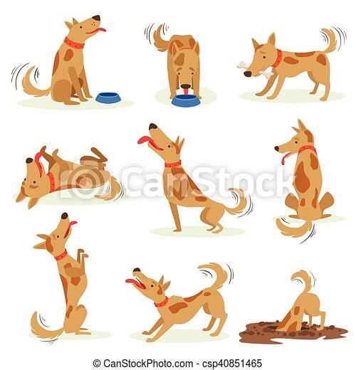 Brown Dog Set Of Normal Everyday Activities - csp40851465