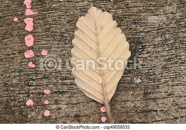 Brown dry leaves on the floor - csp49559533
