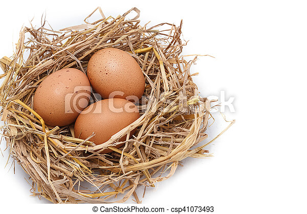 Brown eggs in a nest isolated on a white background - csp41073493