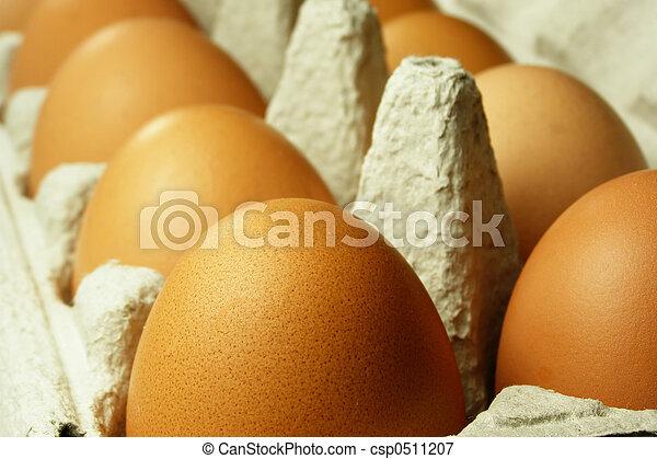 brown eggs - csp0511207
