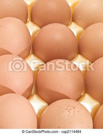 brown eggs - csp2114484