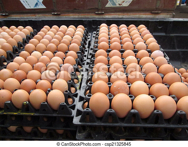 brown eggs - csp21325845