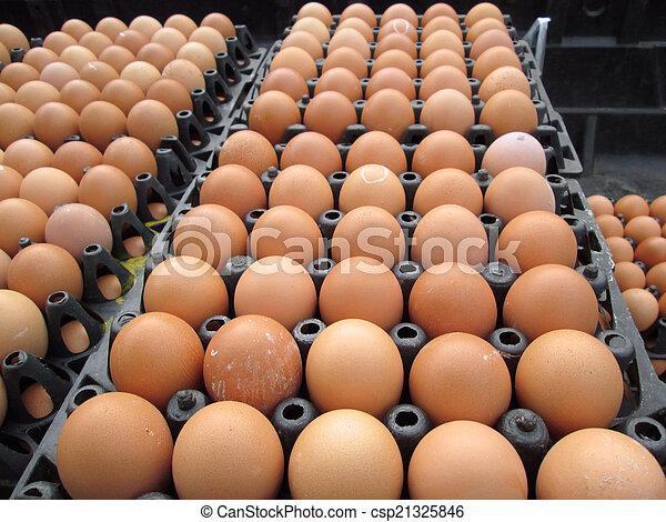 brown eggs - csp21325846