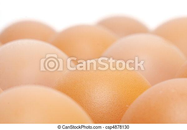 brown eggs - csp4878130