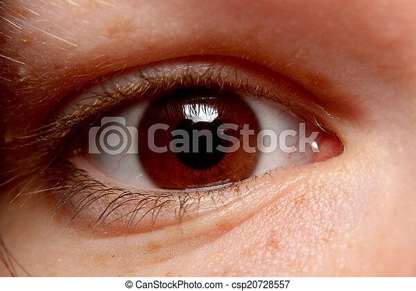 Brown Eye Close-Up - csp20728557