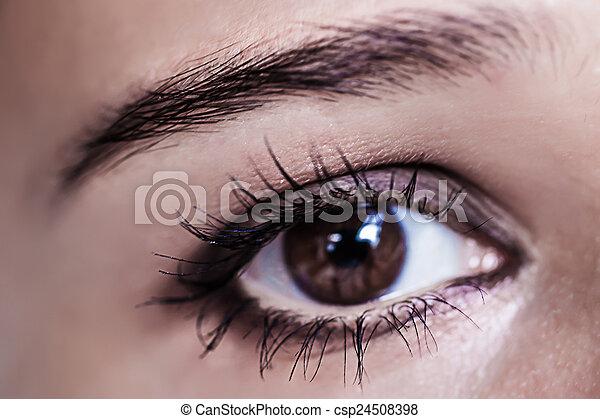 Brown Eye Makeup Beautiful Eyes Make Up Macro