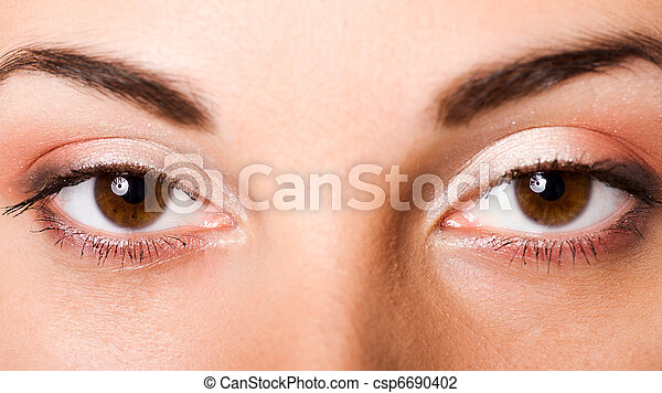 brown eyes - csp6690402