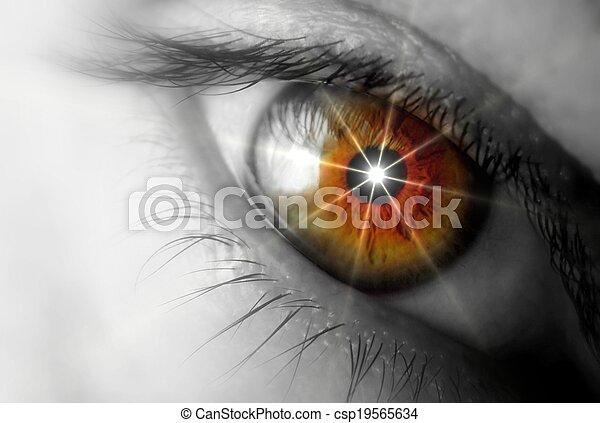 Brown eyes  - csp19565634