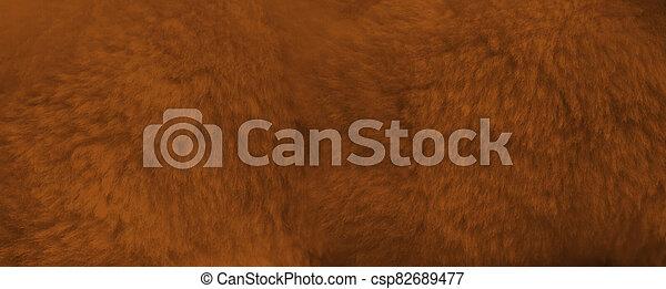 Brown fur background close up view. Banner - csp82689477