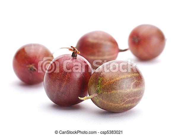 Brown gooseberry fruit - csp5383021