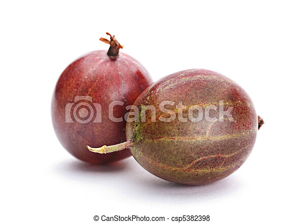 Brown gooseberry fruit - csp5382398