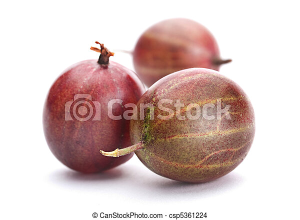 Brown gooseberry fruit - csp5361224
