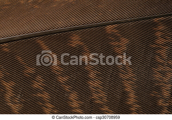 Brown textured feather close up - csp30708959