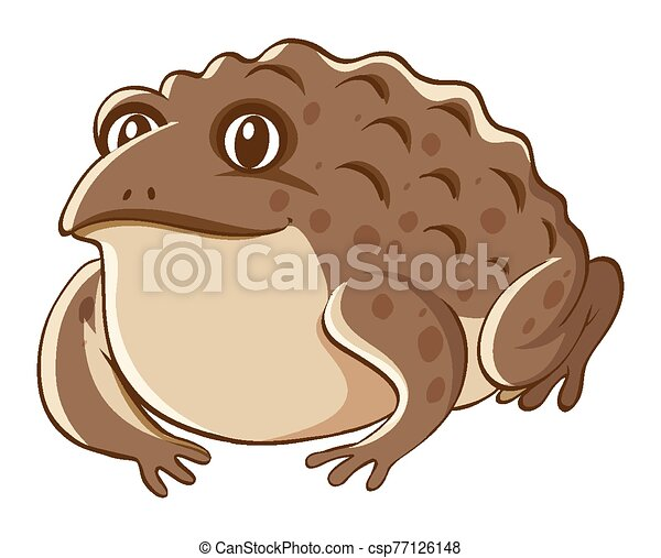 Brown toad on white background - csp77126148