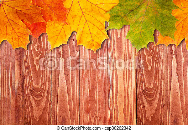 Brown wooden background and autumn leaves - csp30262342