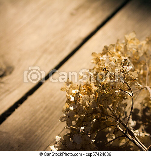 Brown wooden background. - csp57424836