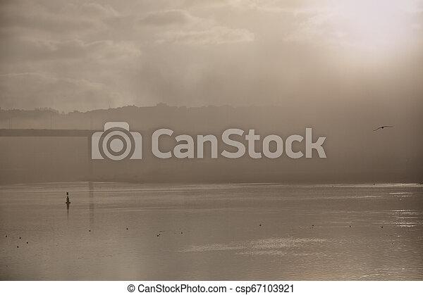 brumeux, aube, rivière - csp67103921