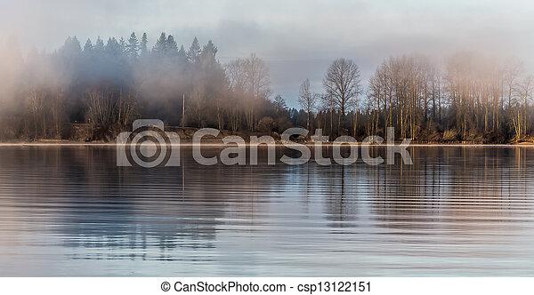 brumeux, rivière, forêt, travers - csp13122151
