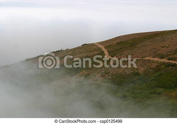 El rastro de niebla - csp0125499