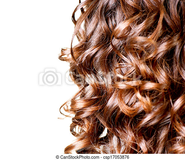 brun, bouclé, isolé, longs cheveux, white., frontière - csp17053876