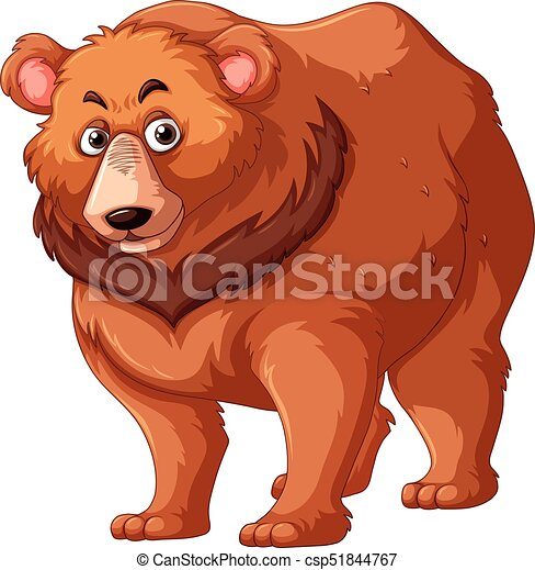 brun, grisonnant, fourrure, ours - csp51844767