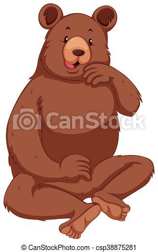 brun, grisonnant, fourrure, ours - csp38875281