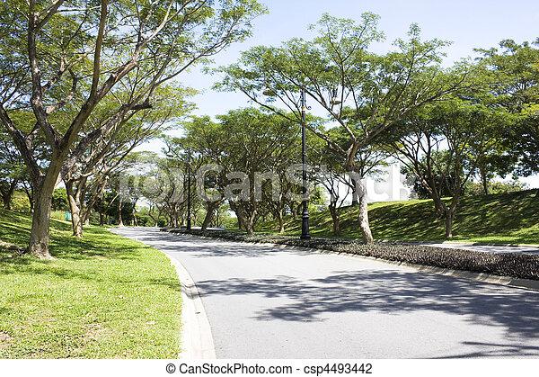 brunei, landscaped, straat - csp4493442