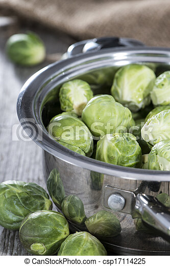 Brussel Sprouts in a pot - csp17114225