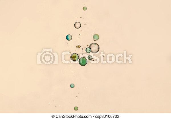 Bubbles - csp30106702